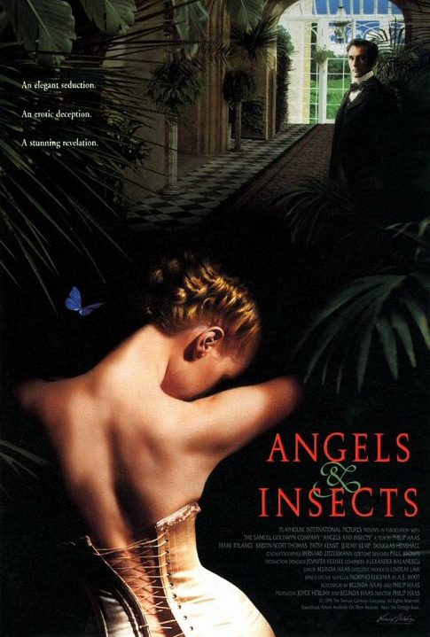 angels_and_insects