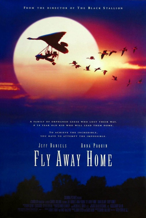 fly_away_home